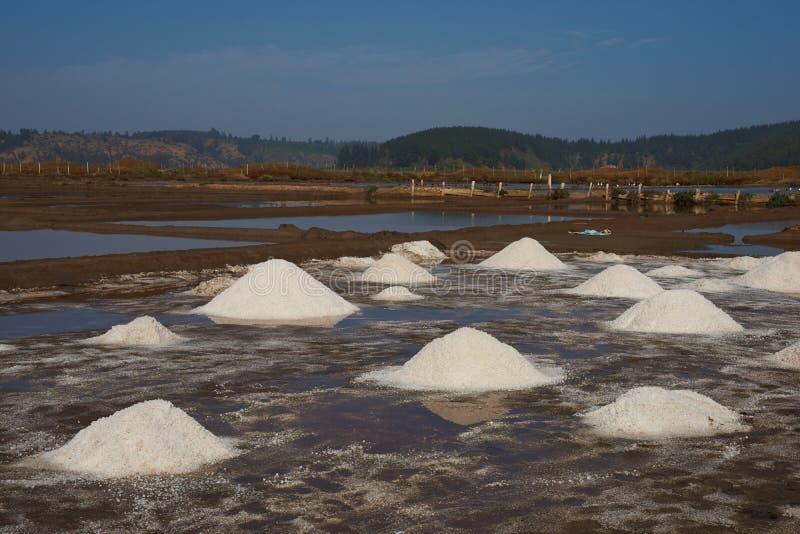 Traditionell salt danande i Chile fotografering för bildbyråer