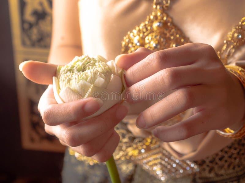 Traditionell thai dräkt med identiteten, thai flickahänder för kvinnor som rymmer lotusblommablommor, identitetskultur av Thailan royaltyfri foto