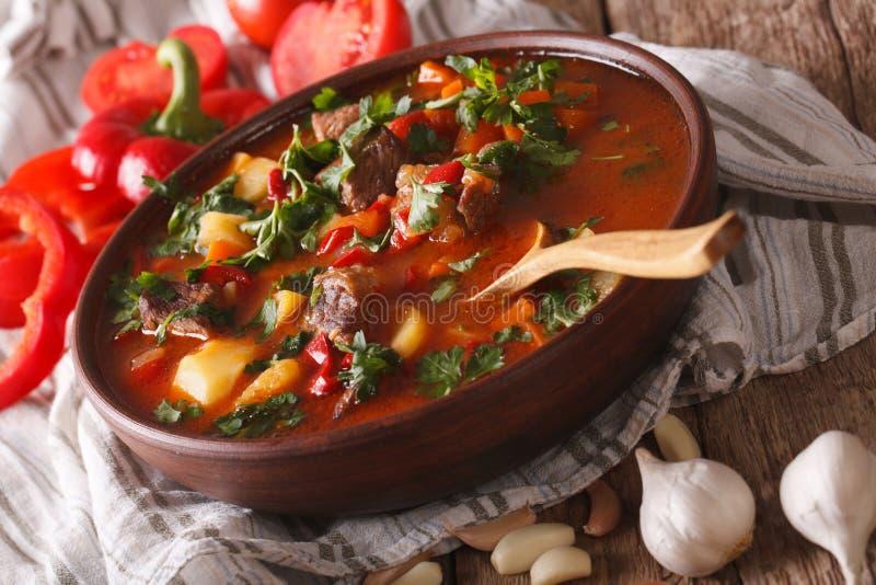 Traditionell ungersk närbild för bogracs för gulaschsoppa i en bunke H royaltyfri foto