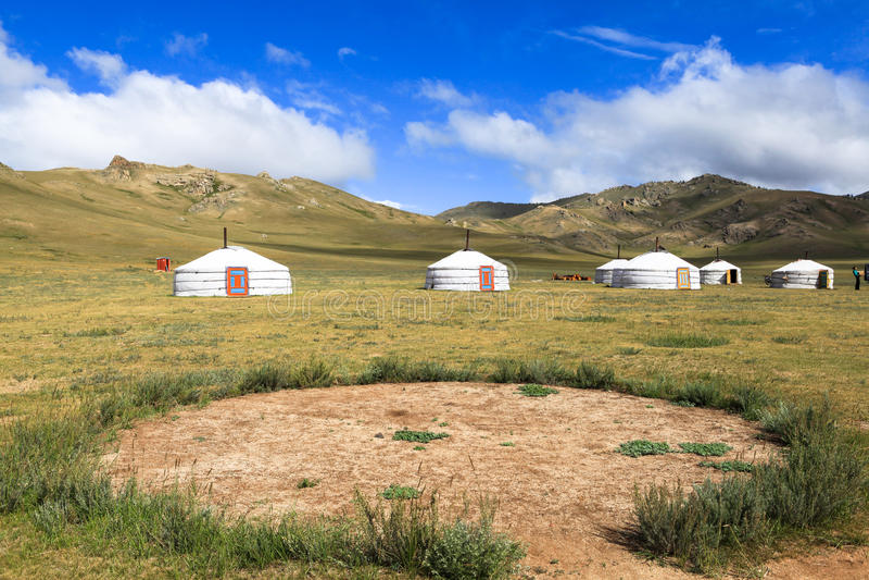 Traditionella gers i Mongoliet royaltyfria bilder