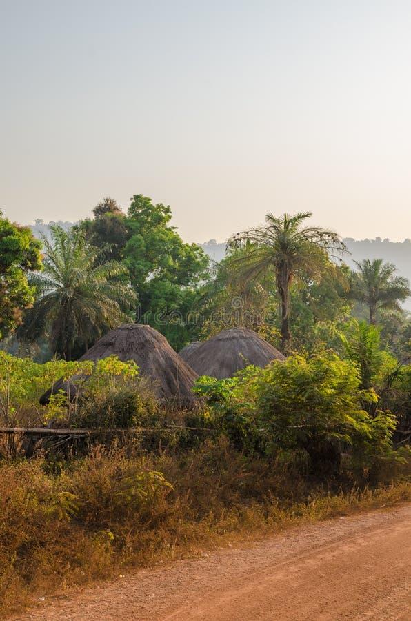 Traditionella halmtäckte runda kojor av Guinea Bissau som döljas bland träd och, gömma i handflatan på grusvägen under solnedgång royaltyfria bilder