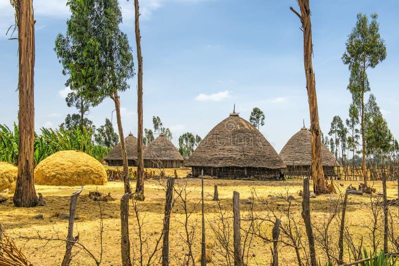 Traditionella hus i Etiopien, Afrika arkivbild