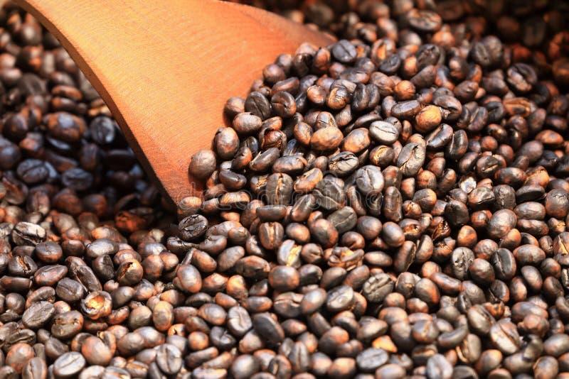 Traditionella kaffebönor som grillar i metallhandfat med spateln arkivbilder