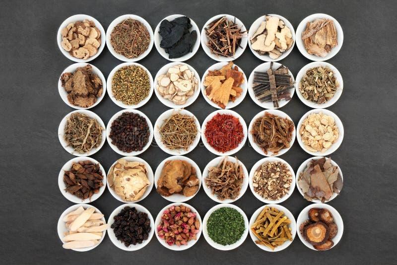 Traditionella kinesiska örter som används inom växtbaserade läkemedel royaltyfri bild