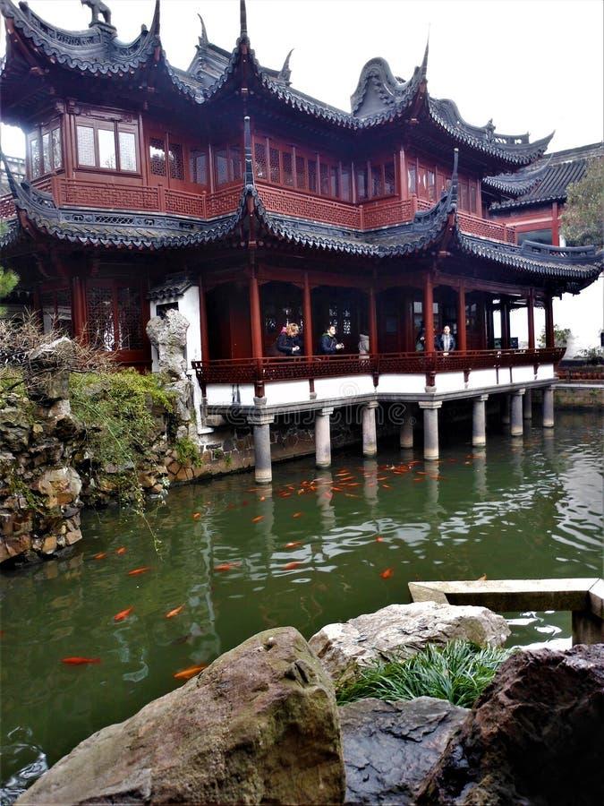 Traditionella kinesiska byggnader, sjö och fiskar i den Shanghai staden Natur och konst arkivbild