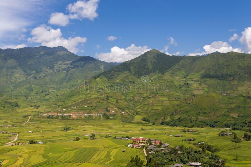 Traditionella ris terrasserar fält i Mu Cang Chai till SAPA-regionen Vietnam arkivfoto