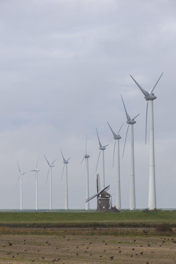 Traditionelle alte niederländische Windmühle Goliath und Windkraftanlagen nahe eemshaven in der Nordprovinz Groningen der Niederl lizenzfreie stockfotografie
