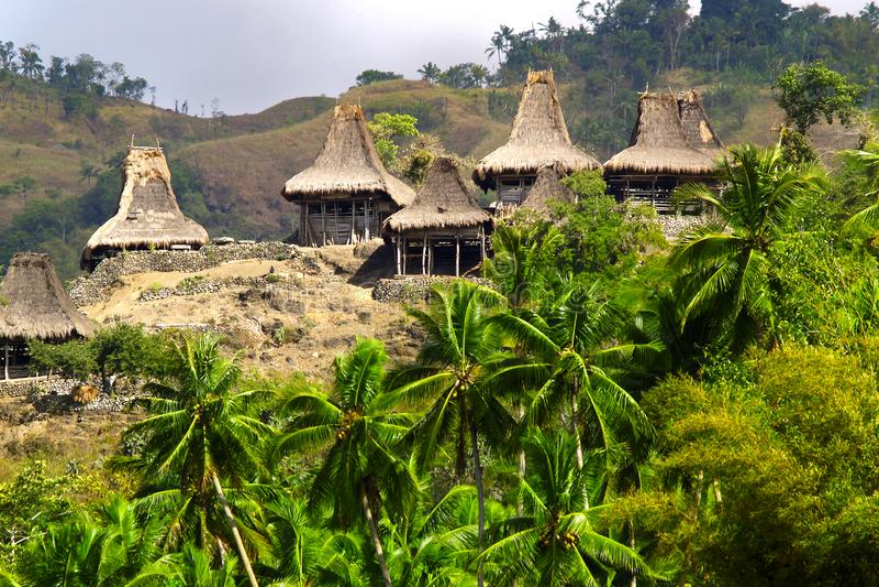 Traditionelle Hütte des Einwohners in sumba Insel stockbilder