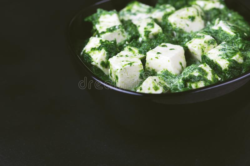 Traditionelle indische Küche Selbst gemachtes palak paneer Copyspace, ho stockbild