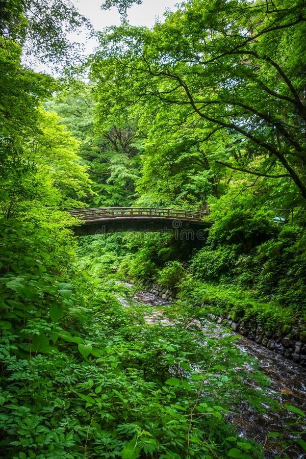 Traditionelle japanische Holzbrücke in Nikko, Japan lizenzfreie stockfotos