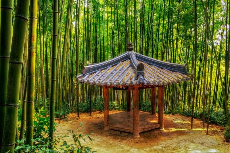 Traditionelle koreanische Pagode unter Bambus stockfoto