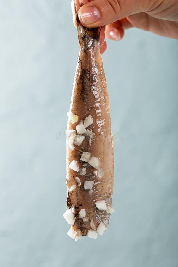 Traditionelle niederl?ndische Nahrungsmittelheringfische lizenzfreie stockbilder