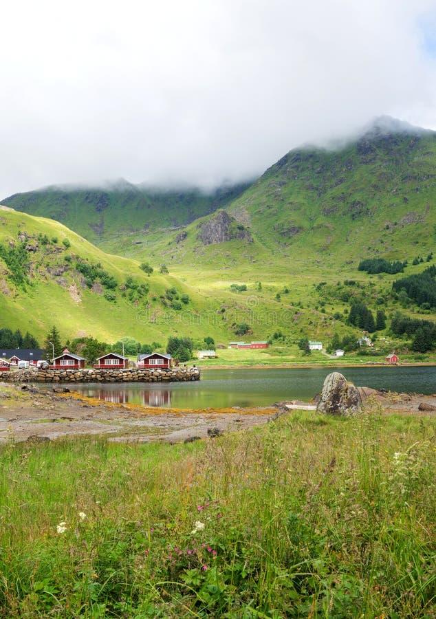 Traditionelle norwegische rote Häuser vor dem hintergrund des Grüns lizenzfreie stockfotografie