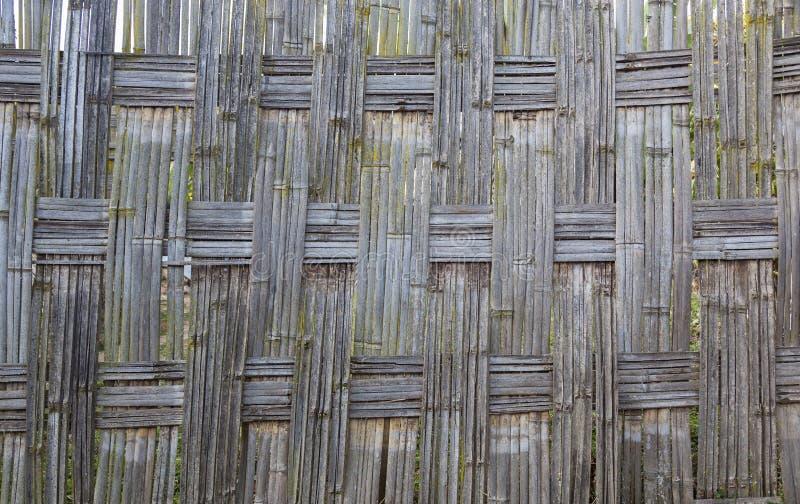 Traditioneller Bambus-Dorze-Zaun Hayzo-Dorf Omo-Tal Ethio stockfoto