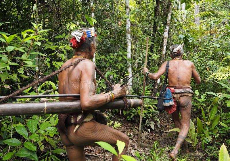 Traditioneller Stamm des Mentawai-siberut Medizinmanntrekkings-Dschungels stockfotografie