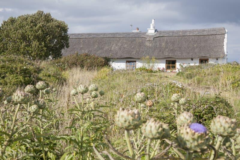 Traditionelles Häuschen, Inishmore; Aran Islands stockfotos