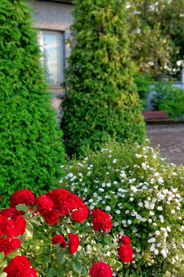 Traditionelles Haus mit Blumen am Sommertag lizenzfreie stockfotos