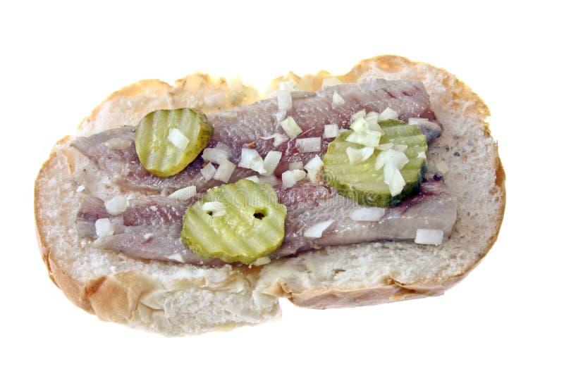 Traditionelles holländisches Sandwich stockbilder