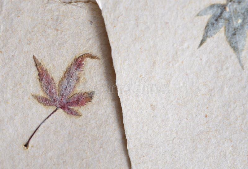 Traditionelles japanisches Papier washi mit Ahornblatt stockbild