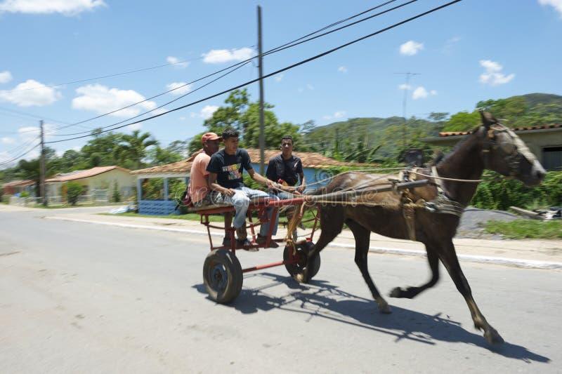 Traditionelles Pferd und Buggy Vinales Kuba mit Passagieren lizenzfreies stockfoto