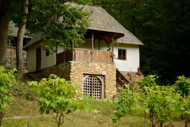 Traditionelles rumänisches Haus lizenzfreie stockfotos
