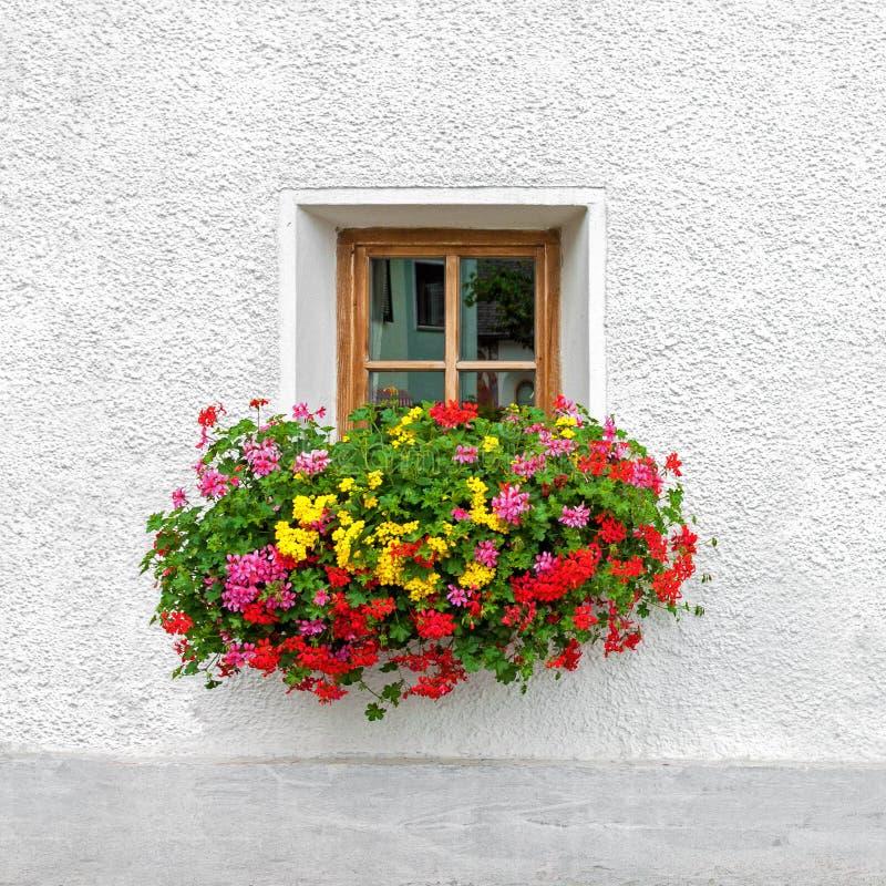 Traditionellt österrikiskt fönster med blommande sommarblommor arkivbilder