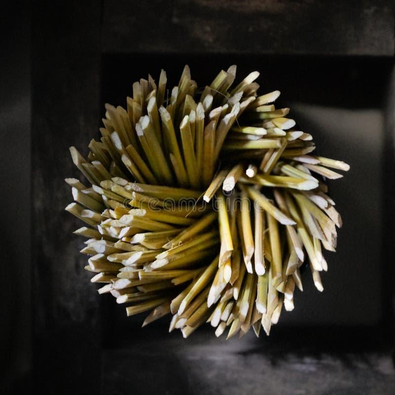 Traditionellt av tandpetare som göras från kokosnöten royaltyfri bild