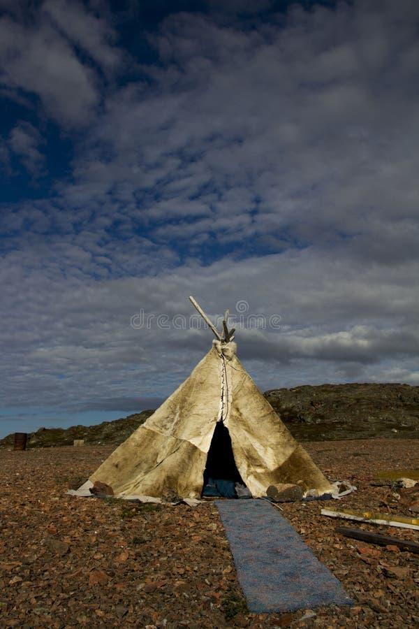 Traditionellt campa i arktisken royaltyfri foto