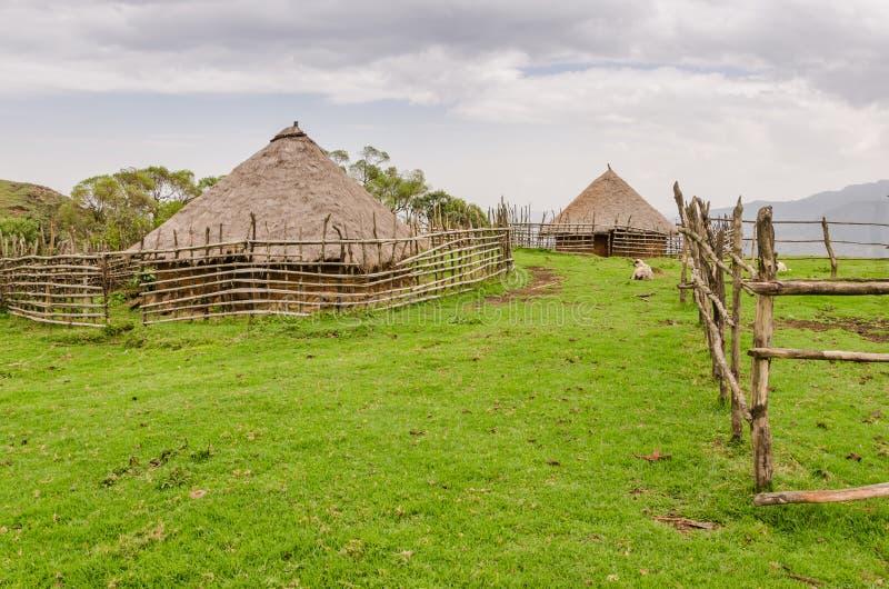 Traditionellt halmtäcka, lera och wood hus av fårbonden i högländer av Kamerun, Afrika arkivfoton