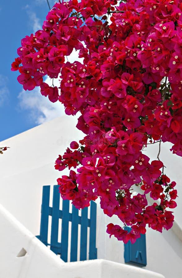 Traditionellt hus på den Mykonos ön royaltyfria bilder