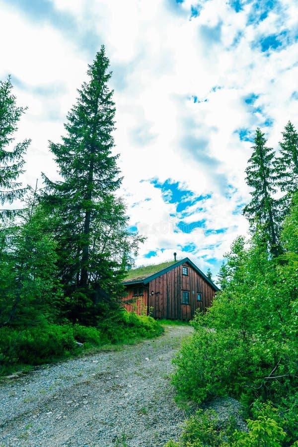 Traditionellt norskt trähus royaltyfri fotografi