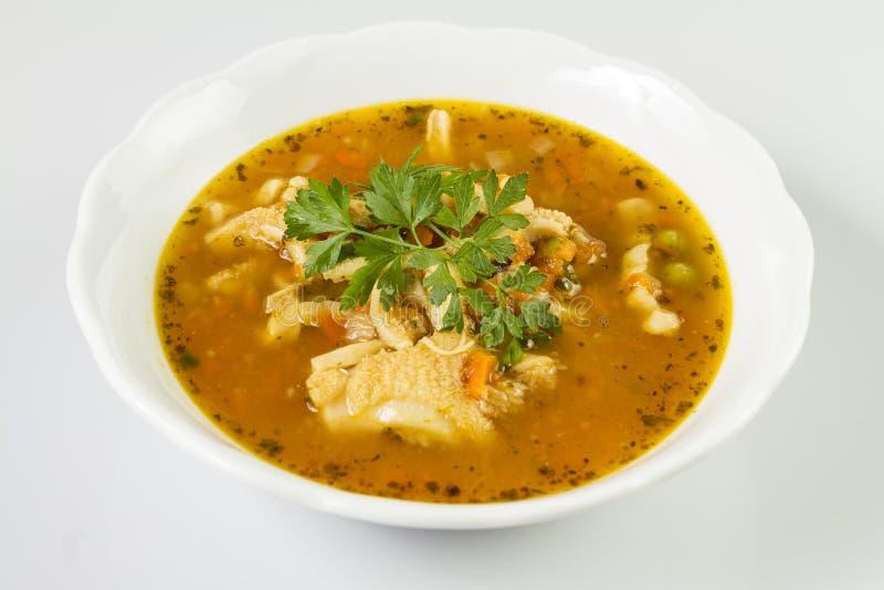 Traditionellt och mycket populärt i östlig och södra Europa soppa från nötköttkomagen royaltyfria foton