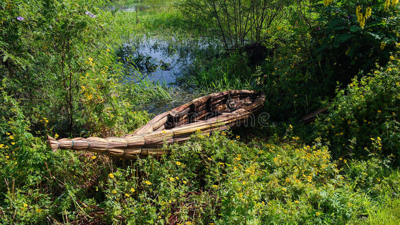 Traditionellt ogräsfartyg, kust av Tana sjön Bahir Dar Etiopien arkivfoton
