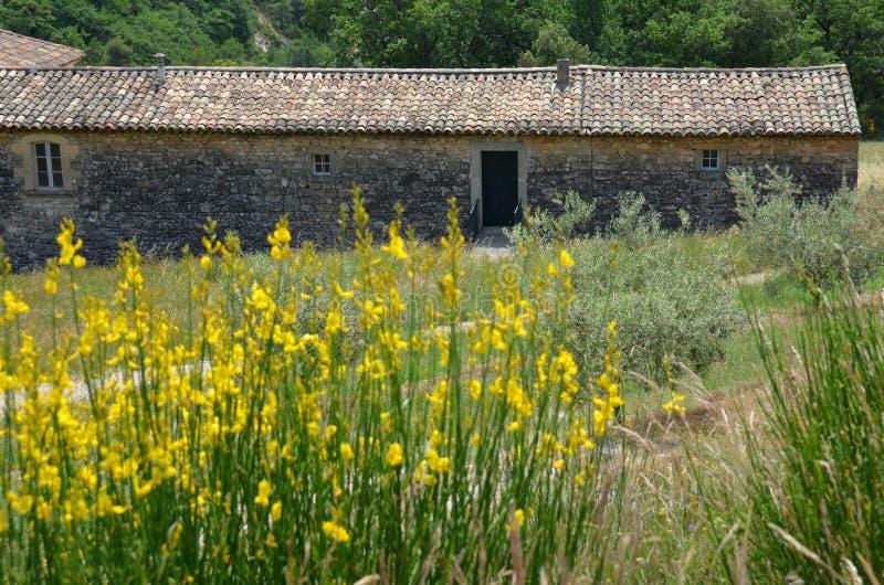 Traditionellt Provencal hus i gult fält royaltyfria foton