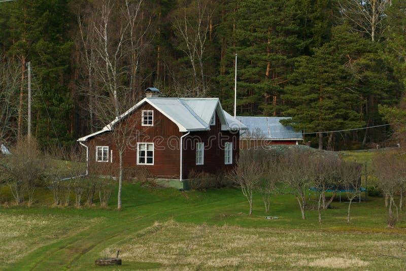Traditionellt trähus i den Finland contrysiden, stuga på grönt gräs nära skog på sommar arkivbilder