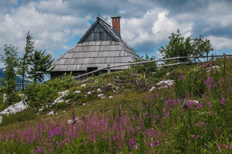 Traditionellt trähus med lösa blommor i Velika Planina den alpina byn, Slovenien arkivfoto