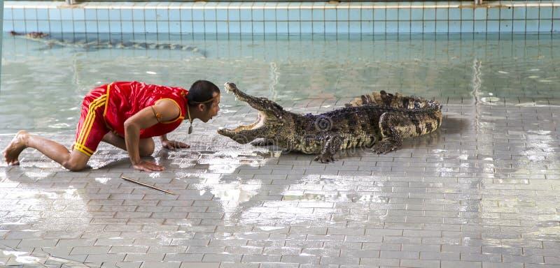 Tradizionale per la manifestazione della Tailandia dei coccodrilli immagini stock libere da diritti