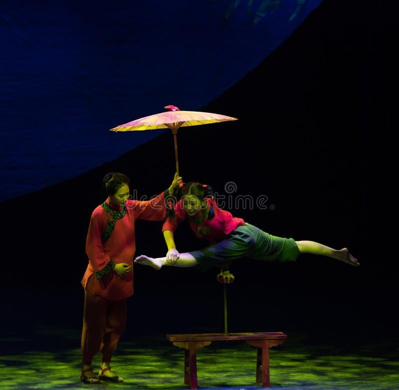 Tradycja i akrobatyczna showBaixi sen noc fotografia royalty free