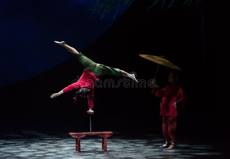 Tradycja i akrobatyczna showBaixi sen noc fotografia stock