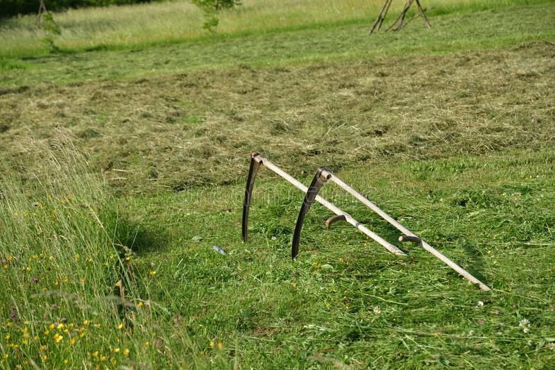 Tradycji kosa dla kosić trawy na zielonej łące obraz royalty free
