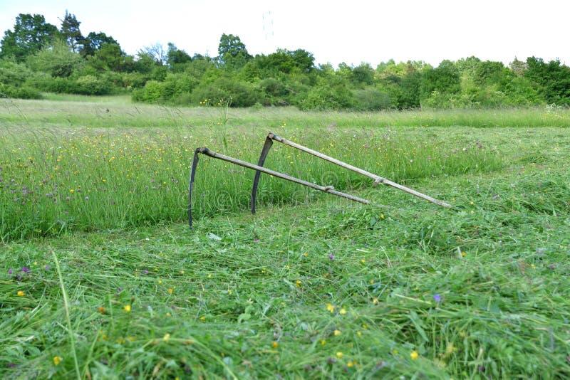 Tradycji kosa dla kosić trawy na zielonej łące fotografia stock