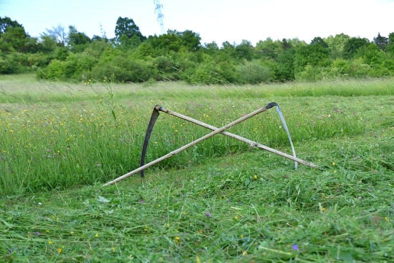 Tradycji kosa dla kosić trawy na zielonej łące zdjęcie royalty free