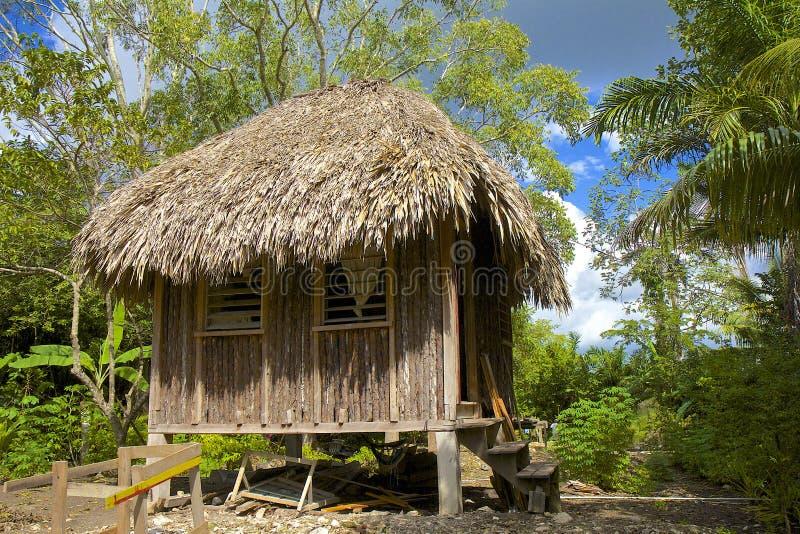 Tradycyjna buda w Belize obraz stock