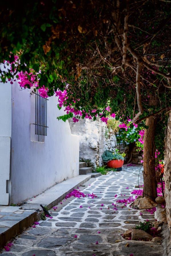 Tradycyjna Cyclades architektura na wyspie Paros, Naoussa wioska Grecja obraz stock