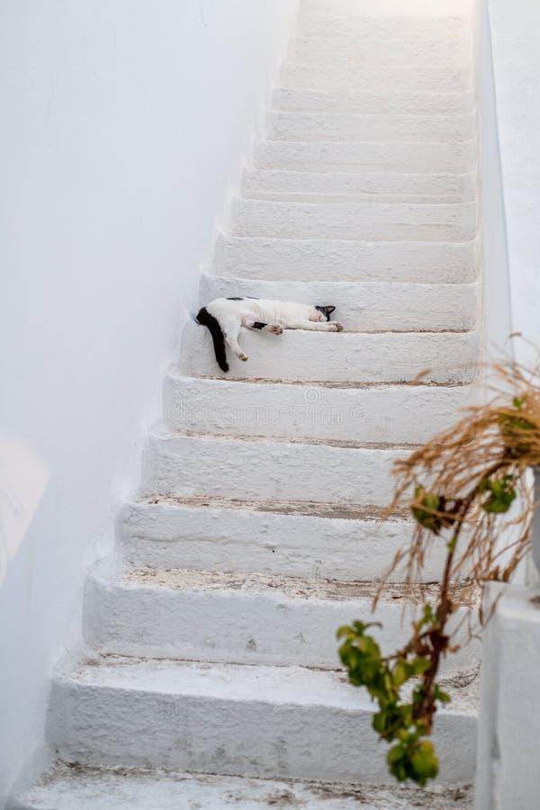 Tradycyjna Cyclades architektura na wyspie Paros, Naoussa wioska Grecja zdjęcie stock