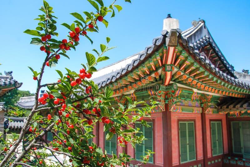 Tradycyjna koreańczyka stylu architektura przy niektóre wioską, korea południowa zdjęcie royalty free