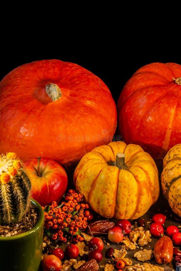 Tradycyjne Niemieckie jesieni banie, jagody, dokrętki i kaktus, jak fotografia royalty free