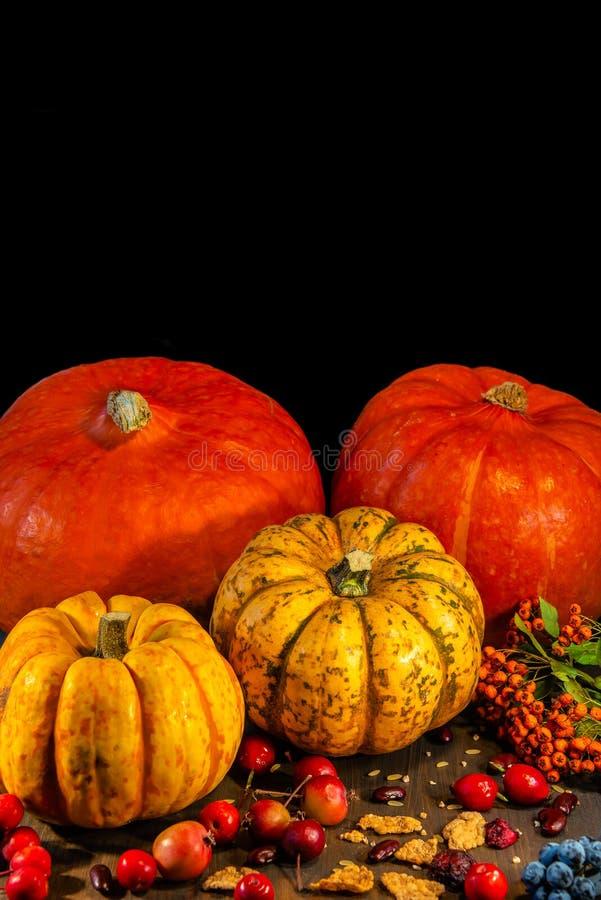 Tradycyjne Niemieckie jesieni banie, jagody i dokrętki jako Li, zdjęcie stock