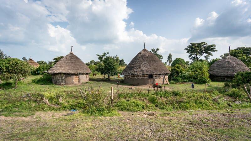 Download Tradycyjne Słomiane Budy W Omo Dolinie Etiopia Obraz Stock Editorial - Obraz złożonej z wejście, bydło: 106900004