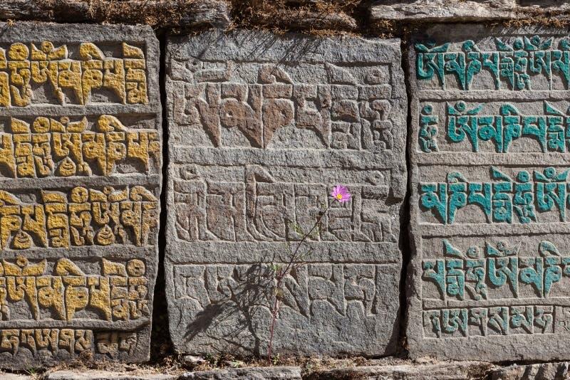 Tradycyjni Buddyjscy Mani kamienie z buddystą zdjęcia royalty free